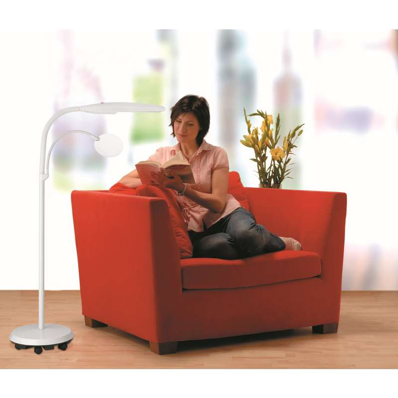 Daylight D23030 01 Swan Floor Lamp