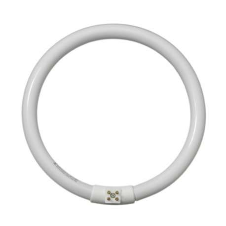 Daylight D12010 22W/T5 Circular Fluorescent Tube