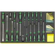 Stahlwille 96831196 TCS 4622/4650+10760+10766. Screwdriver and Hex Key Set in TCS Inlay